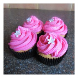 Standard pink cupcakes